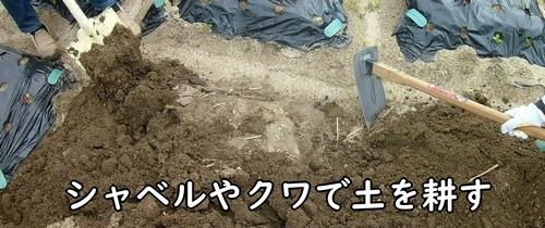 シャベルやクワで土を耕す