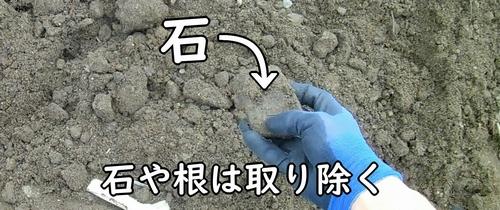 石や根は取り除く