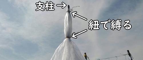 寒冷紗を支柱に結びつける