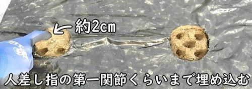 深さは約2cm