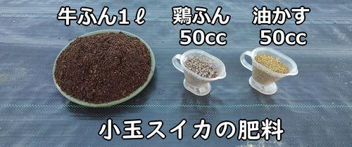 小玉スイカの肥料