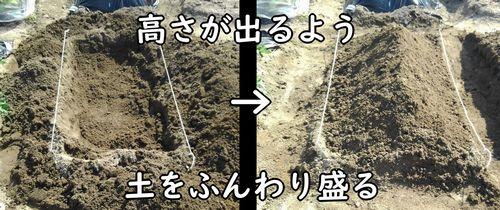 掘った土を戻して畝を立てる