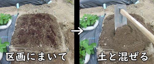堆肥を区画の土と混ぜる