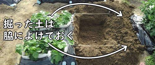 掘った土は脇によけておく