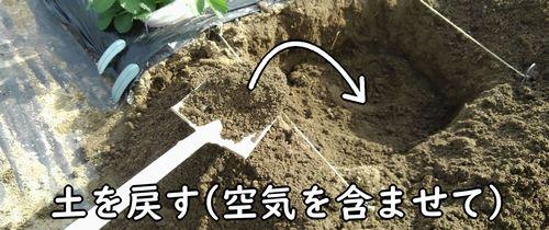 土を戻して畝を作る