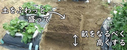 土は空気を含ませて盛る