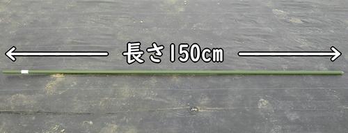 長さ150cm