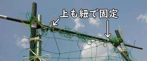 上も紐で固定する