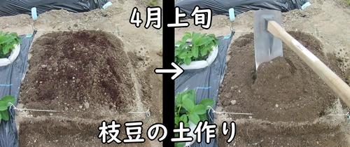 枝豆の土作り
