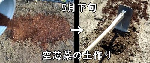 空芯菜の土作り