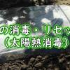 土の消毒・リセット(太陽熱消毒)