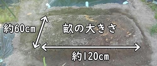 畝は60cm×120cmの大きさ