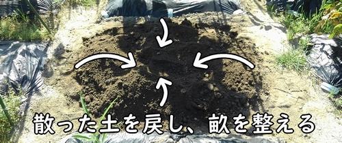 散った土を畝の方へ戻す