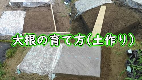 大根の土作り
