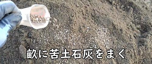 畝に苦土石灰をまく