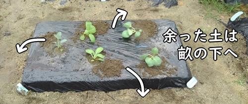 余った土は畝の下へ落とす