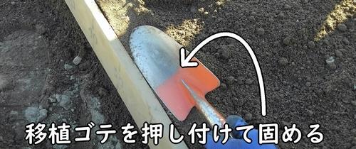 畝の縁は移植ゴテで固める